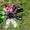 силиконовые галоши,  цветные  #300435