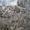 Мраморный сляб (серый мрамор) #865613