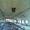 Продается  объект (животноводческий комплекс бывшего колхоза) #1688640