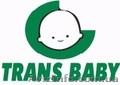 Trans baby производство детских колясок. - Изображение #3, Объявление #675732
