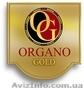 натуральный кофе, горячий шоколад,  органический зелёный чай   Органо  Голд