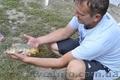 Отдых в горах Крыма, рыбалка в Голубинке - Изображение #3, Объявление #940429