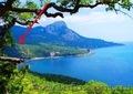 Шикарный участок с видом на море ЮБК бухта Ласпи 10 соток для дома вашей мечты ! - Изображение #3, Объявление #1021765