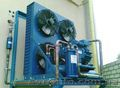 Промышленное морозильное и холодильное оборудование